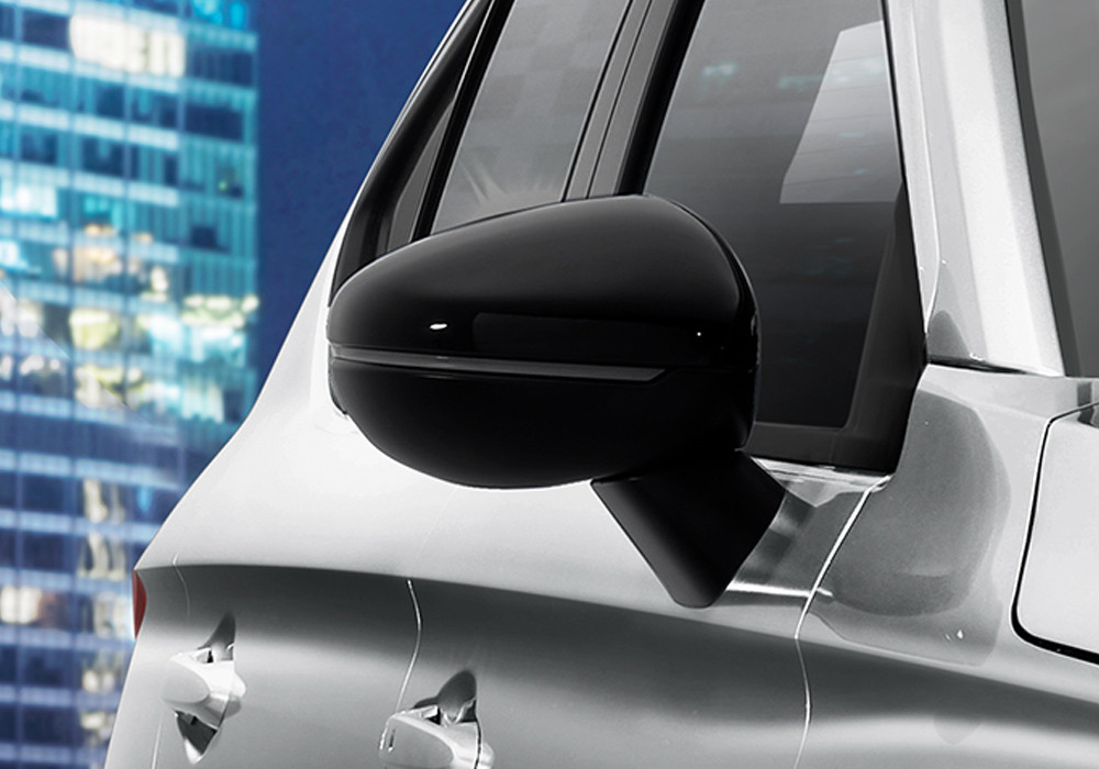 Black Door Mirror with LED Turning Signal
